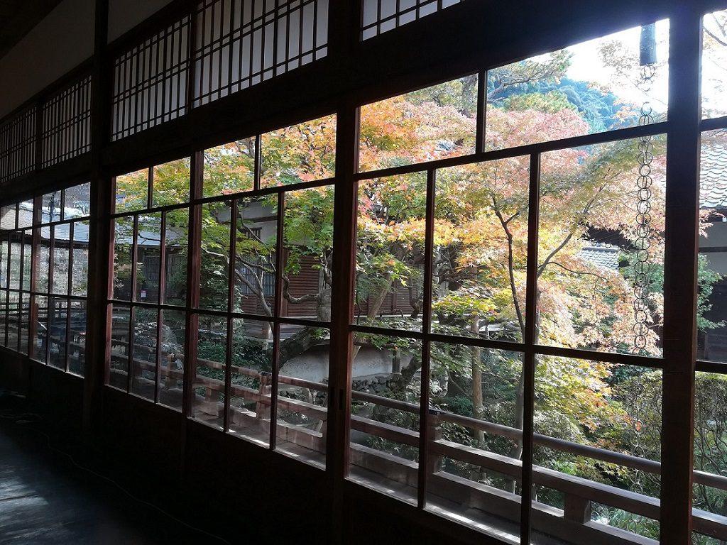 紅葉,永観堂,京都