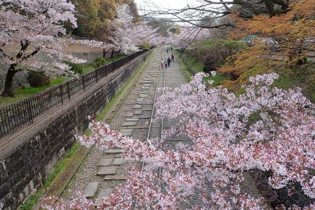 前撮りができる京都鉄道博物館